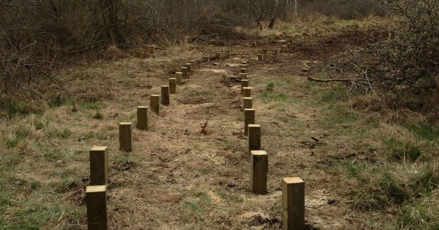 JE-Mark Anläggning trall naturområde