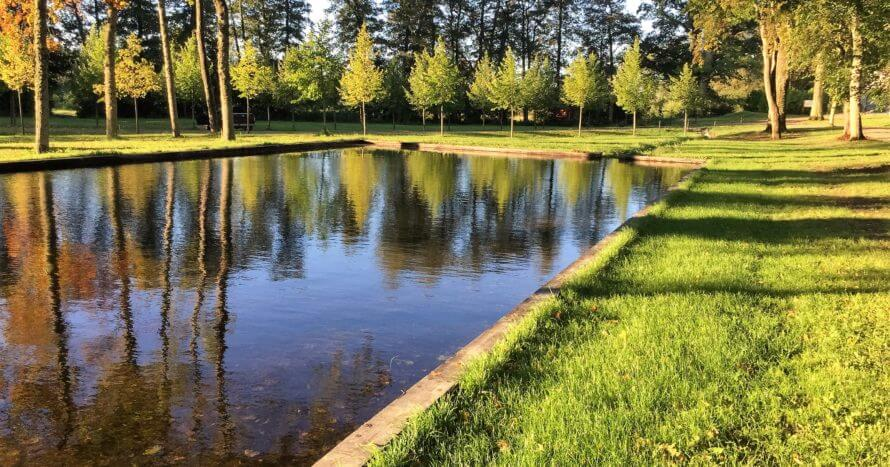 JE-Mark-dammbygge-Skånelaholms-slottspark
