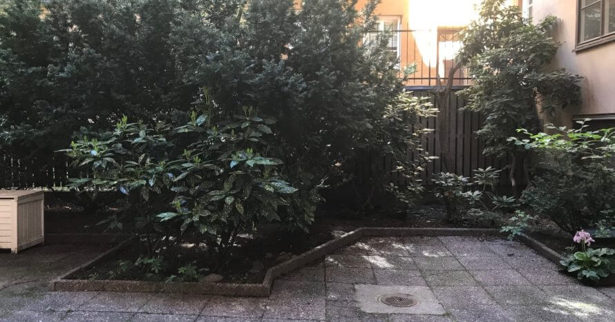 före-trädgårdsrenovering-brf-jemark
